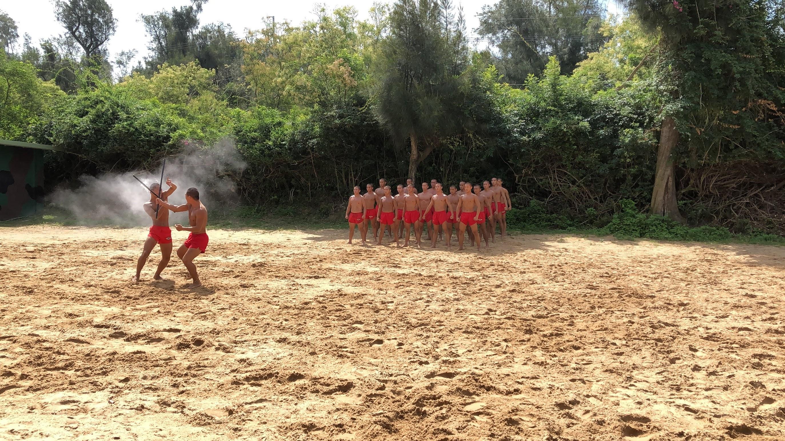 海龍蛙兵戰技