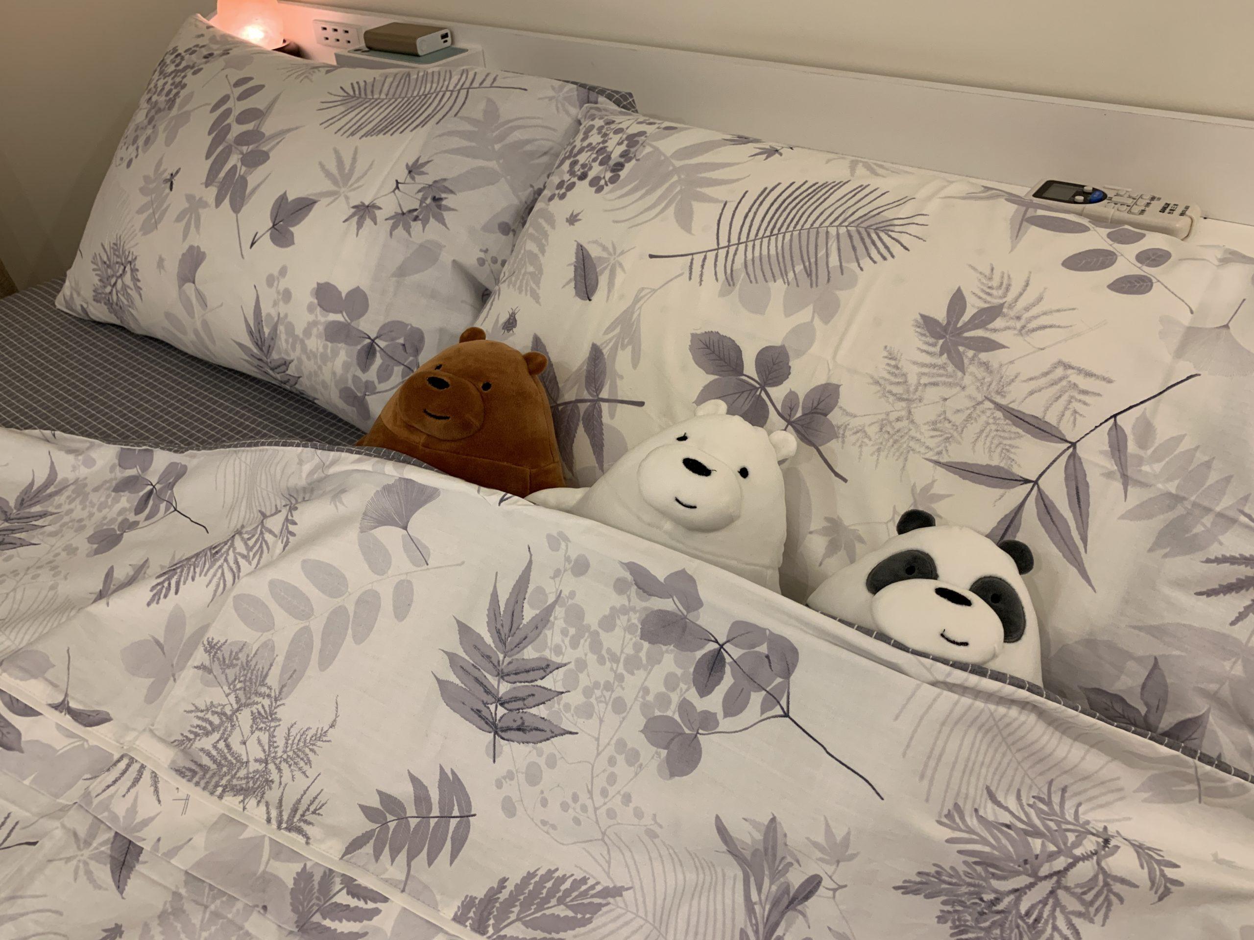 Annahome棉床本舖|碳化森林精梳棉床包組推薦,MIT台灣製造、透氣、滑順觸感舒適好眠 @秤瓶樂遊遊